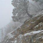 Первый снег на Ай-Петри 2012